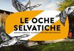 Location vacances Bicinicco - Agriturismo Le oche selvatiche-1
