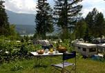 Camping avec WIFI Autriche - Naturpark Schluga Seecamping-2