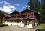 Hôtel Bedretto - Hotel Alpenhof-3