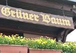 Hôtel Lauda-Königshofen - Grüner Baum-2