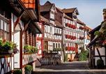 Hôtel Gemünden (Felda) - Romantik Hotel Schubert-2