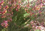 Location vacances  Province de Brindisi - Trulli Eutopia-3