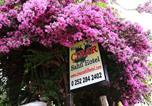 Location vacances Dalyan - Cinar Sahil Pansiyon-1