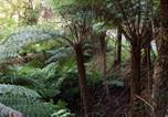 Location vacances Apollo Bay - Tall Trees Retreat-3