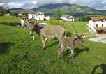 Location vacances Aldudes - Casa Rural Petisansenea Ii-2