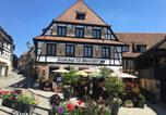Hôtel Dieffenthal - Hotel Restaurant Le Brochet-1
