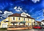 Hôtel Plzeň - Hotel Pod Kokšínem-1