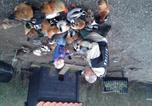 Location vacances Purmerend - Farm Overleekerhoeve-4