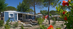 Campings avec quartiers VIP / Premium